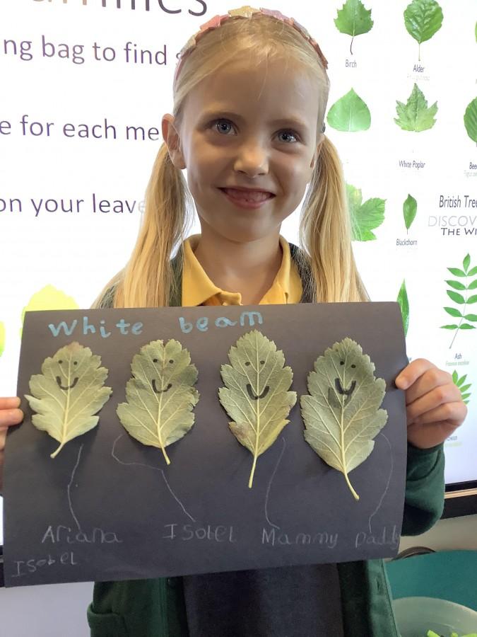 Leaf Family Trees