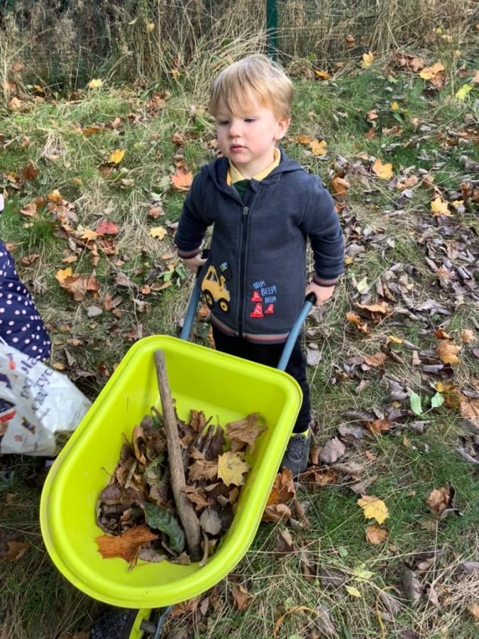 Autumn and Harvest Festival